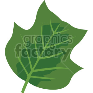 leaf no background clipart. Royalty-free image # 408079