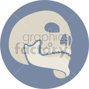 skull three quarter view on circle background clipart. Royalty-free image # 408375