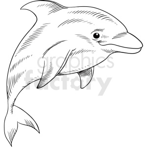 black white realistic dolphin vector clipart clipart. Commercial use image # 411449