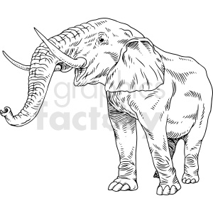 black and white elephant vector clipart