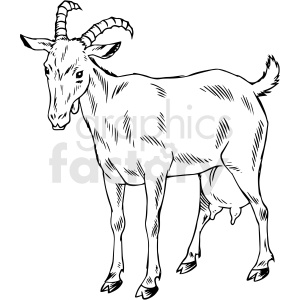 black and white goat vector illustration clipart. Commercial use image # 412589