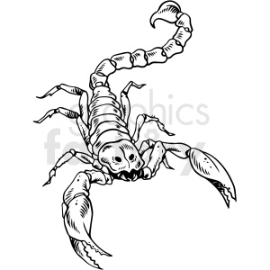 black and white scorpion tattoo design vector clipart. Commercial use image # 412708