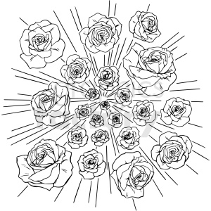 black and white roses exploding vector clipart