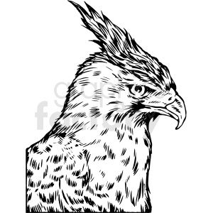 black and white realistic hawk vector clipart clipart. Commercial use image # 413201