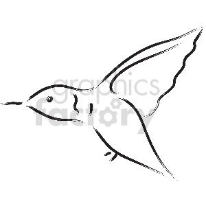black and white hummingbird vector clipart clipart. Commercial use image # 413345