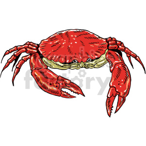 colorful crab vector clipart clipart. Commercial use image # 415055