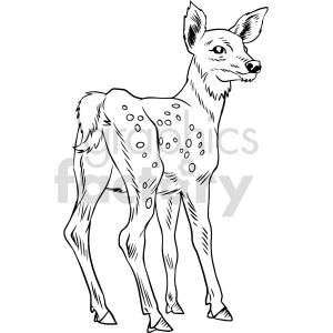 animals deer black+white