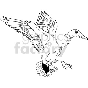 black and white duck vector clipart clipart. Commercial use image # 416169