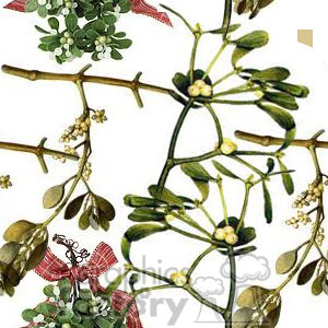 120506-mistletoe clipart. Commercial use image # 372656