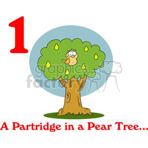 On the 1st day of Christmas my true love gave to me A Partridge in a Pear Tree clipart. Commercial use image # 377871