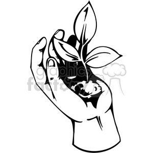 hand planting plant 095 clipart. Royalty-free image # 386128