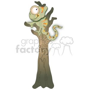 chameleon in tree 02