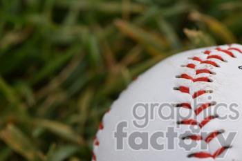 new baseball in grass clipart. Commercial use image # 391035