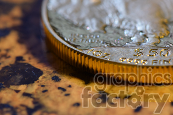 coin photo. Royalty-free photo # 391050