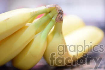 bananas photo. Royalty-free photo # 391135