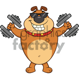 Royalty Free RF Clipart Illustration Smiling Brown Bulldog Cartoon Mascot Character With Sunglasses Working Out With Dumbbells Vector Illustration Isolated On White Background clipart. Royalty-free image # 404241