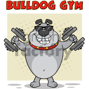 Smiling Gray Bulldog Cartoon Mascot Character With Sunglasses Working Out With Dumbbells Vector Illustration With Background And Text Bulldog Gym Isolated On White clipart. Royalty-free image # 404255