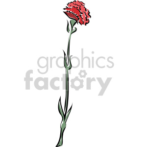 carnation clipart. Royalty-free image # 151155