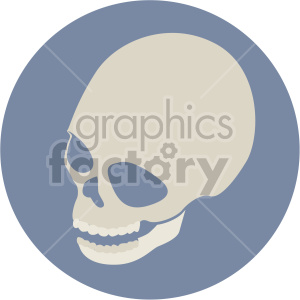 skull three quarter top view on circle background clipart. Royalty-free image # 408370