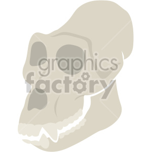 gorilla skull clipart. Commercial use image # 408371
