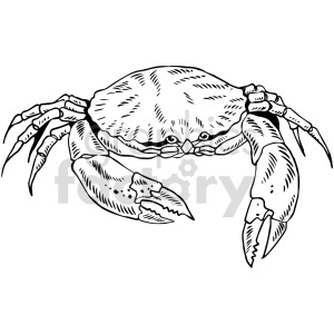 crab black and white clipart clipart. Commercial use image # 415044