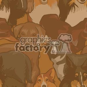 022506 puppies light