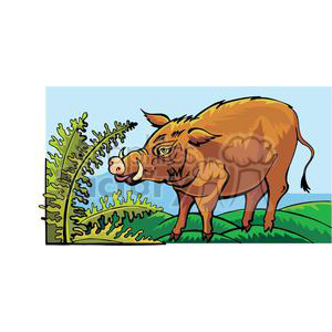 wild pig clipart. Royalty-free image # 380043