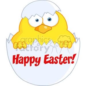 4747-Royalty-Free-RF-Copyright-Safe-Surprise-Yellow-Chick-Peeking-Out-Of-An-Egg-Shell clipart. Royalty-free image # 384403
