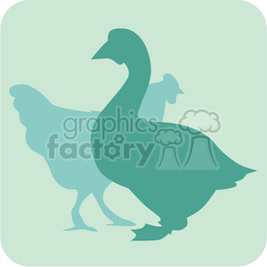 animals duck chicken 097 clipart. Royalty-free image # 386097