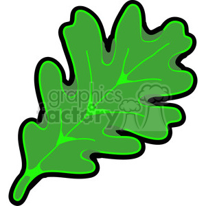 green White Oak Leaf clipart. Royalty-free image # 387343
