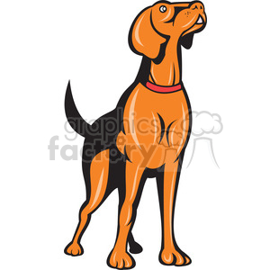 golden retriever dog front ISO clipart. Commercial use image # 394428