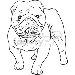 cartoon black+white animal bulldog dog dogs