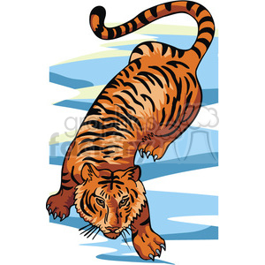 Tiger prowling clipart. Commercial use image # 129246