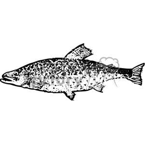 vintage distressed brook trout fish GF vector design vintage 1900 vector art GF clipart. Royalty-free image # 402477