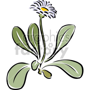 daisy clipart. Commercial use image # 151159