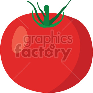 tomato no background