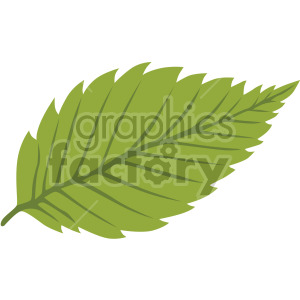 birch leaf clipart. Royalty-free image # 408039