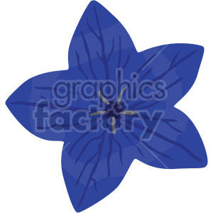 Platycodon grandiflorus clipart. Royalty-free image # 408052