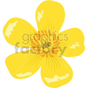 Buttercups flower clipart. Royalty-free image # 408074