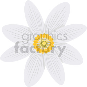 Bloodroots flower clipart. Royalty-free image # 408075