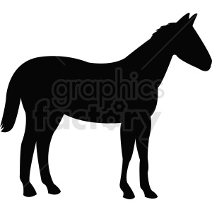 vector horse silhouette animation. Royalty-free animation # 410495