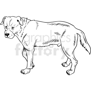 black and white realistic dog vector clipart clipart. Commercial use image # 411794