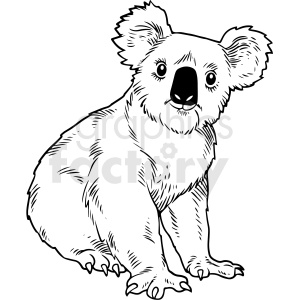 black and white realistic koala bear vector clipart