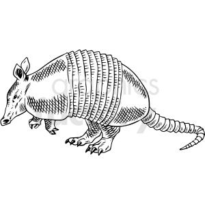 black and white armadillo vector illustration clipart. Commercial use image # 412590
