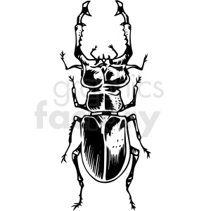 black white beetle vector clipart clipart. Commercial use image # 412653