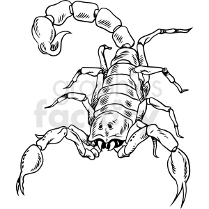 black and white scorpion drawing clipart. Commercial use image # 412719
