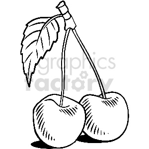 black and white cherry vector clipart clipart. Commercial use image # 413303