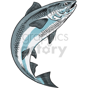 salmon clipart clipart. Commercial use image # 415049