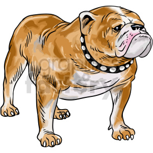 bulldog vector clipart clipart. Commercial use image # 416184