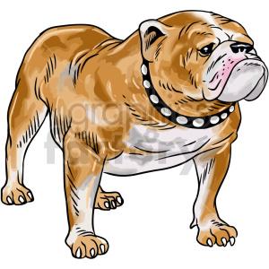 clipart - bulldog vector clipart.